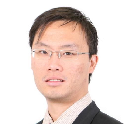 Assoc. Prof. Dr. Chan Chee Seng